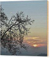 Silhouette At Sunset Wood Print by Bruno Santoro