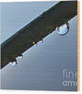 Silky Droplet Wood Print by Kaye Menner