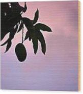 Single Mango On A Tree At Twilight Wood Print by Anya Brewley schultheiss