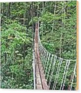 Sky Bridge 2 Wood Print by Aimee L Maher Photography and Art Visit ALMGallerydotcom