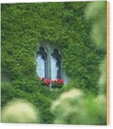 Sleeping Beautys Castle -- Dornroeschens Schloss Wood Print by Arthur V Kuhrmeier