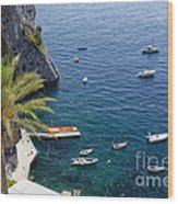 Small Boats And A Palm Tree Wood Print by George Oze