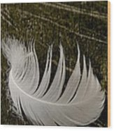 Soft Curve One Wood Print by Odd Jeppesen