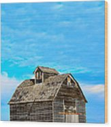 Solitude In The Country No.2 Wood Print by Christine Belt