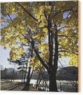 Spirit By The Lake Wood Print by Rob Travis