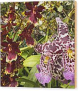 Spotted Flowers Wood Print by Silvie Kendall