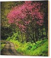Spring Mountain Road Wood Print by Michael L Kimble
