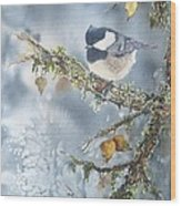 Spring Thaw Wood Print by Patricia Pushaw