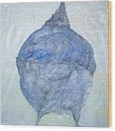 Stellar Jay From  Back Wood Print by Debbi Chan