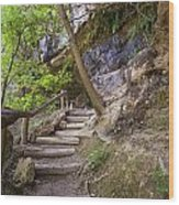 Steps To The Cave Wood Print by Lisa  Spencer