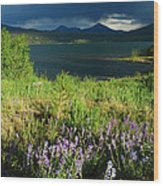 Storm In Dillon Wood Print by Lynn Bauer