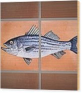 Striped Bass Wood Print by Andrew Drozdowicz