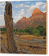 Stumped At Zion Wood Print by Peter Tellone