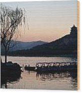 Summer Palace Evening Wood Print by Mike Reid