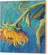 Sunflower Wood Print by Candy Mayer