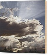Sunlight And Stormy Skies Wood Print by Mick Anderson