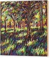 Sunlight Through The Trees Wood Print by John  Nolan