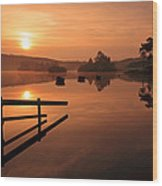 Sunrise At Knapps Loch Wood Print by Grant Glendinning