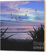 Sunset Down Under Wood Print by Karen Lewis