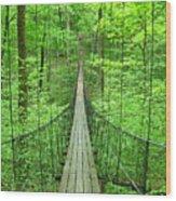 Suspension Bridge Wood Print by Daniel Muller