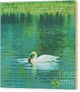 Swan Lake Wood Print by Judi Bagwell