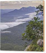 Table Rock And Yellow Flowers Wood Print by David Waldrop