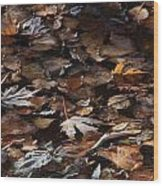 The Browns Of Fall Wood Print by Cynthia  Cox Cottam