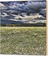 The Cattle Farm Wood Print by Douglas Barnard