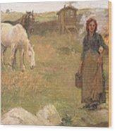 The Gypsy Camp Wood Print by Harold Harvey