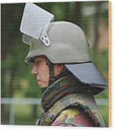 The Helmet And Visor Used Wood Print by Luc De Jaeger