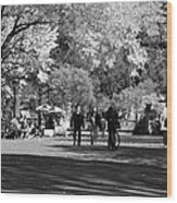 The Mall At Central Park In Black And White Wood Print by Rob Hans