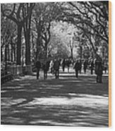 The Mall At Central Park Wood Print by Rob Hans