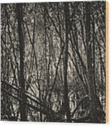 The Mangrove Wood Print by Armando Perez