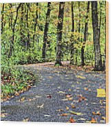 The Mount Vernon Trail. Wood Print by JC Findley