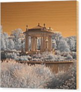 The Muny At Forest Park Wood Print by Jane Linders