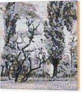 The Park Wood Print by Odon Czintos
