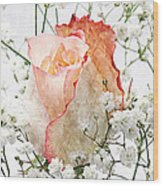 The Rose Wood Print by Andee Design