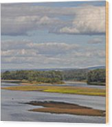 The Susquehanna River At Kingston Pa. Wood Print by Bill Cannon