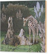 The Termite Mounds Wood Print by Sandra Chase