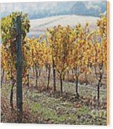 The Vineyard Wood Print by Margaret Hood