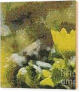 The Yellow Flower Wood Print by Odon Czintos
