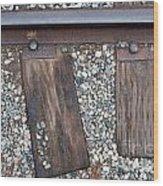Ties Wood Print by Dan Holm