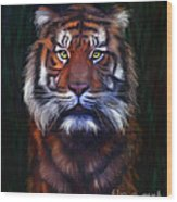 Tiger Tiger Wood Print by Michelle Wrighton