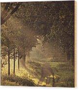 To The Shire Wood Print by Studio Yuki