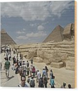 Tourists View The Great Sphinx Wood Print by Richard Nowitz