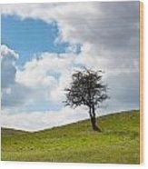 Tree Wood Print by Semmick Photo