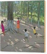 Tree Swing Wood Print by Andrew Macara