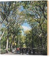 Trees On The Mall In Central Park Wood Print by Rob Hans