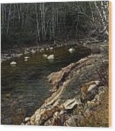 Trout Fishery Wood Print by Skip Willits