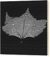 Turn Over A New Leaf Wood Print by Betsy Knapp
